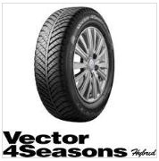 Vector 4Seasons Hybrid