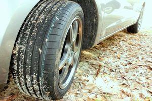 ミネルバタイヤ タイヤ